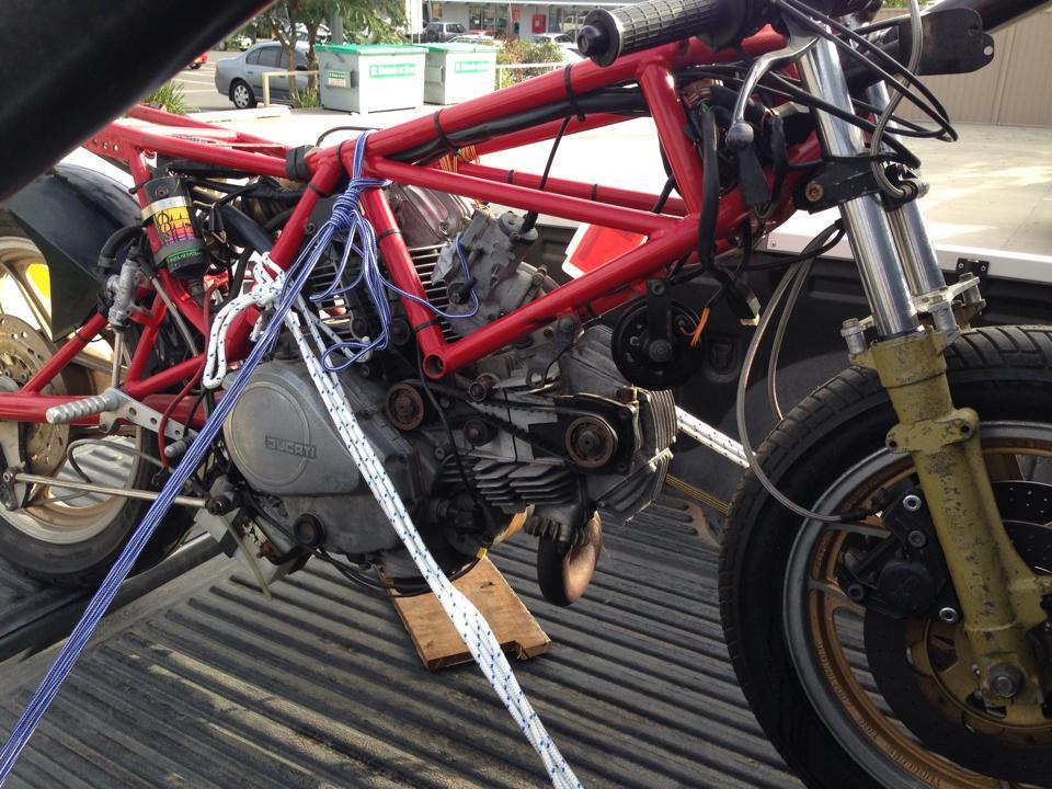 Bevel Ducati Forum
