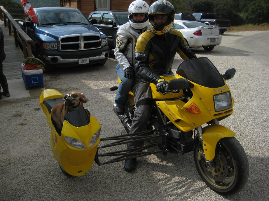 http://www.ducati.ms/forums/attachments/sport-classic/80234d1290256366-sport-1000-sidecar-letsroll.jpg