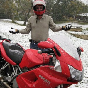 Duc In The Snow