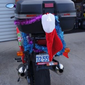 Dressed Up For 2011 Toy Run